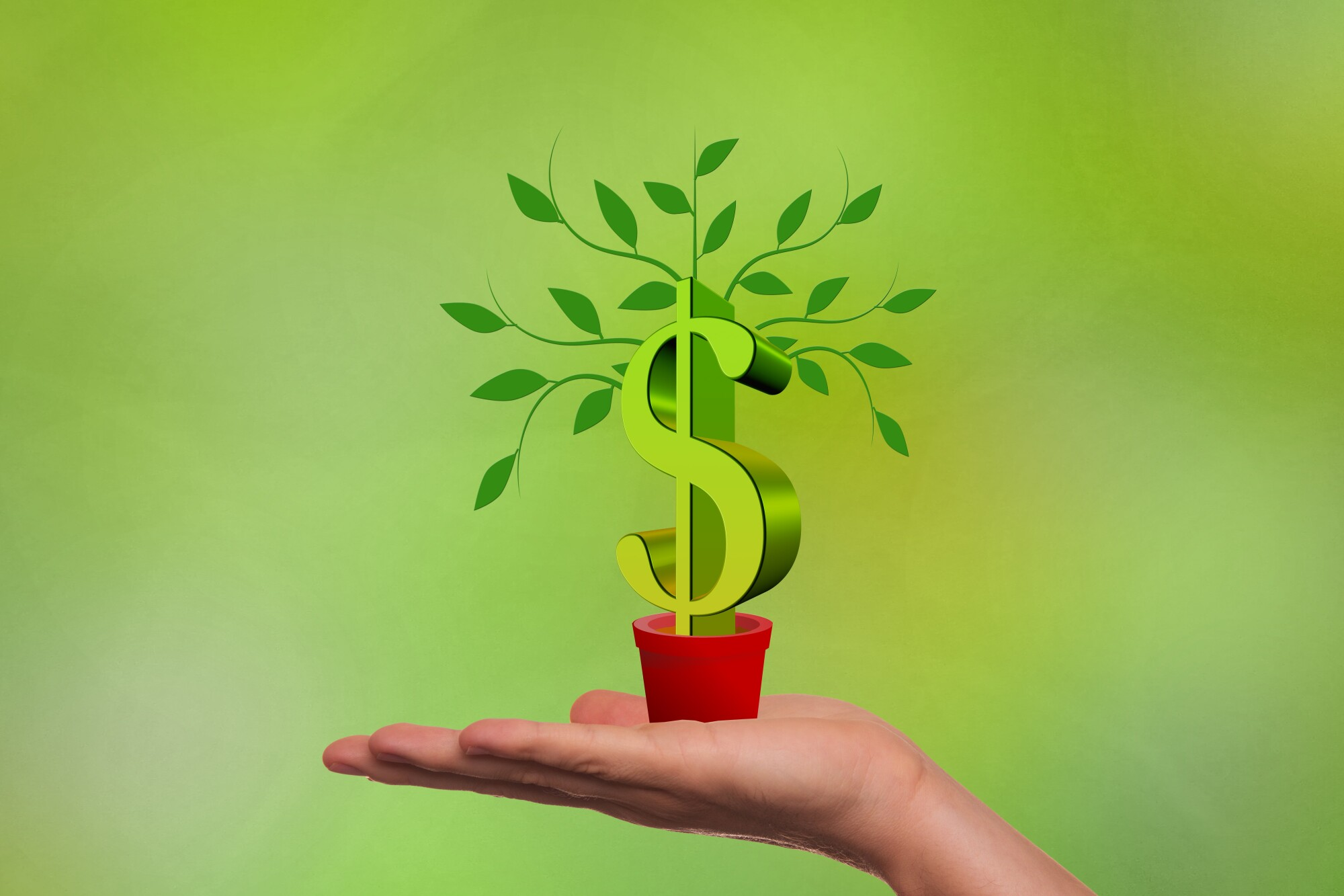 5 Signs Your Business Could Benefit From Growth Capital Services